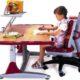 Как выбрать ортопедический стул для школьника для правильной осанки